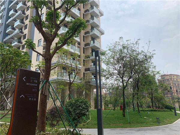 光明凤凰城-南太公寓